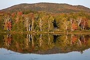 Reflection of fall color trees in still lake in Adirondack Mountains.