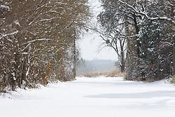 Snow covered road, Trinity River Audubon Center, Dallas, Texas, USA.