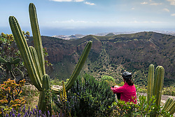 Rear view of woman admiring scenic mountain view