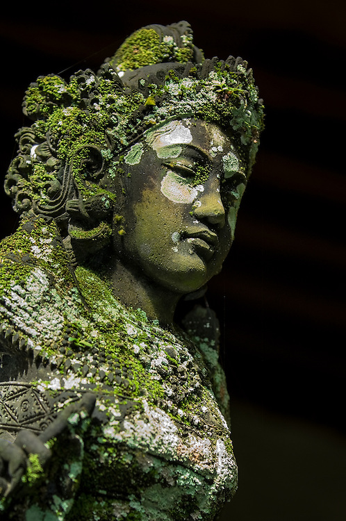 Stock photograph of a moss and lichen covered basalt statue of a Ramayana goddess in Bali