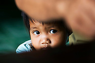 a young shy boy is hiding behing his dad and a table. He belongs to the Co Thu minority, in central Vietnam's highlands.