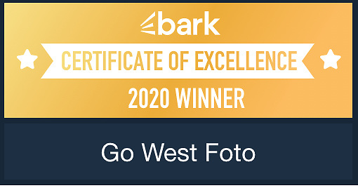 Bark.com Certificate of Excellence Awarded for Reviews in 2020 Portrait, Event, and Wedding Photography