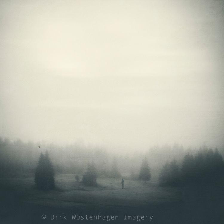 Small figure on a meadow in fog with the silhouette of trees in the distance