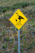 Nene (Hawaiian Goose) crossing sign on the road to Haleakala Crater, Haleakala National Park, Maui, Hawaii