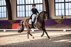 Kronberg, Gestüt Schafhof, KRONBERG _ Int. Festhallen Reitturnier Schafhof Edition 2020,<br /> <br /> WESTENDARP Alexa (GER), Der Prinz 4<br /> Preis der Liselott Schindling Stiftung<br /> Piaff-Förderpreis - Einlaufprüfung<br /> U25 Grand Prix<br /> Dressurprüfung Kl.S***<br /> <br /> 19. December 2020<br /> © www.sportfotos-lafrentz.de/Stefan Lafrentz