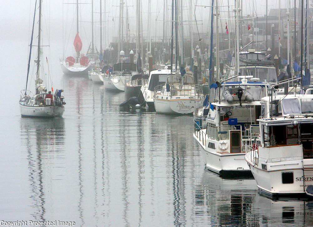Fog fills the Small Craft Harbor as a sailboat heads out to the Monterey Bay.<br /> Photo by Shmuel Thaler <br /> shmuel_thaler@yahoo.com www.shmuelthaler.com