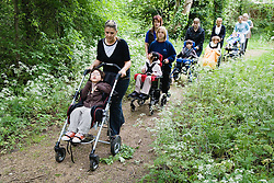 Group of children with physical disabilities out on a nature walk,