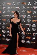 020417 Goya Cinema Awards 2017 - Red Carpet
