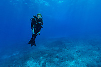 Sylvia alone on Reef in Seychelles