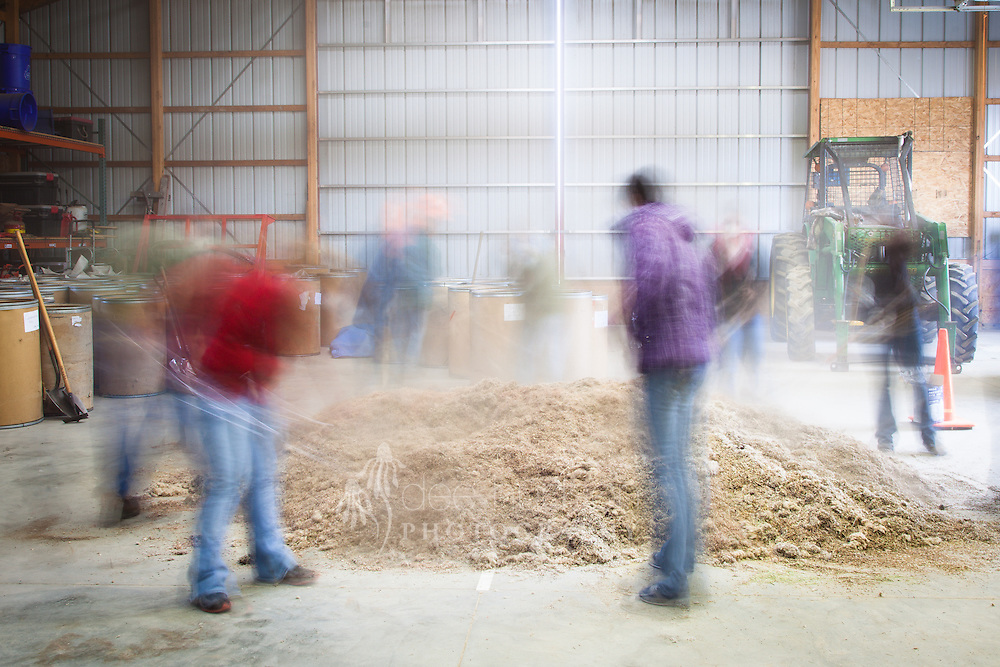 Volunteers attended a Saturday workday to help the land stewards hand–mix six hundred pounds of seed. Most of the mixed seed was used to restore six acres of land back to prairie, while the remaining amount was used to over seed other existing units.