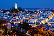 Blue hour on coit tower, viewed from russian hills, san francisco, california