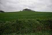 agricultural landscape in France Languedoc Aude