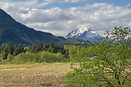 Mount Robbie Reid and a Durieu area blueberry farm near Mission, British Columbia, Canada