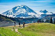 Skyline Divide trail, Mount Baker (elevation 10,781 feet) in Mount Baker Wilderness, in Mount Baker-Snoqualmie National Forest, near Bellingham, Washington, USA.