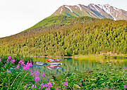 Alaska. Flaotplane on scenic lake near Seward.