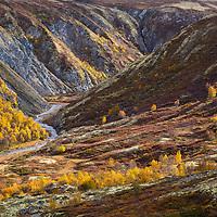 Rondane, Norway. Sept 2021.