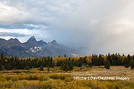 67545-09702 Fall color and Grand Teton Mountain Range from Blacktail Falls Overlook, Grand Teton National Park, WY