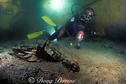 diver and skeleton of green sea turtle, <br /> Chelonia mydas, in Turtle Cavern, <br /> Sipadan Island, Borneo, Malaysia ( Celebes Sea )<br /> MR 274