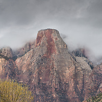 Low lying clouds blanket the canyon of Zion in an ethereal scene.