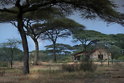 Scenic landscape with view of acacia trees and thatched cottages at the Ndutu Safari lodge in the Ngorongoro Conservation Area, Tanzania