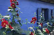 Farm cottage Window in Transylania, Romania.