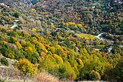 Colourful mountain side