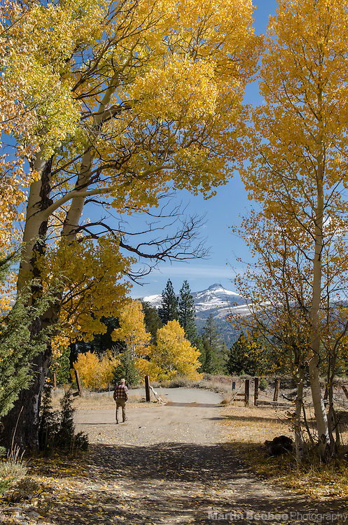 Man walking on dirt road in Hope Valley, with a view of Pickett Peak, fall, Toiyabe National Forest, California