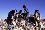 Children scavenging for food and any other useful things on a municipal rubbish dump in Buenos Aires city, Argentina