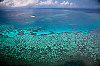 Aerial Views of Knuckle Reef, from the Great Barrier Reef in the Whitsundays, Queensland, Australia.