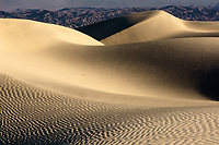 Warm light on Mesquite Dunes, Death Valley National Park, California, USA