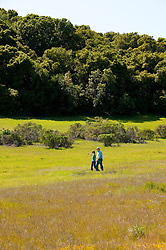 California wildflower travel: Couple hiking at Edgewood Park.Photo copyright Lee Foster.  Photo # cawild101734