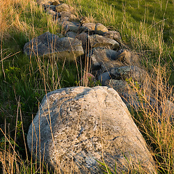 Stone wall.  Strawberry Hill Preserve in Ipswich, Massachusetts.
