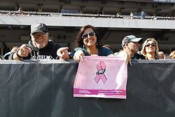 A Philadelphia Eagles fan holds a pink tackling breast cancer towel during the NFL game between the Detroit Lions and the Philadelphia Eagles on Sunday, October 14th 2012 in Philadelphia. The Lions won 26-23 in Overtime. (Photo by Brian Garfinkel)