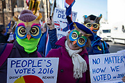 Anti Brexit pro Europe demonstrators as wise owls supporting a Peoples Vote at the protest in Westminster opposite Parliament as MPs debate and vote on amendments to the withdrawal agreement plans on 14th February 2019 in London, England, United Kingdom.