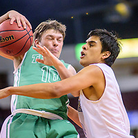 031115  Adron Gardner/Independent<br /> <br /> Texico Wolverine Tanner Dickerman (10), left, winces as Laguna Acoma Hawk Austyn Salvador (0) swipes for the ball during a 3A New Mexico state basketball tournament quarterfinal at the Santa Ana Star Center in Rio Rancho Wednesday.  The Hawks beat the Wolverines  60-55.
