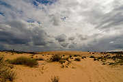Nitzanim Sands is a nature reserve of sand dunes south of Ashdod down to Askelon, Israel