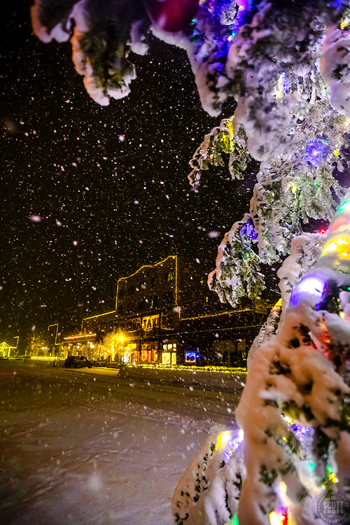 """""""Snowy Christmas Tree in Truckee 11"""" - Photograph of a snow-covered Christmas tree at night, during a snowstorm, in Historic Downtown Truckee, California."""