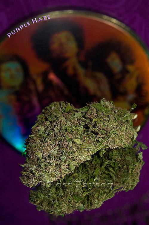 Fine art cannabis