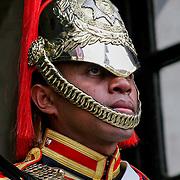 Royal horse guard, London, England (June 2005)