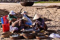 Women sorting fishing on China Beach, Vietnam.