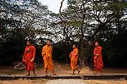 Pilgrim monks visit Angkor Wat.