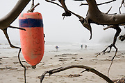 Backpackers hike past driftwood and buoys along the North Coast, between Chilean and Norwegian Memorial, in Olympic National Park, Washington.