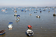 Dinghies and small yachts at moorings in Poole Harbour at Sandbanks, Dorset, England, UK