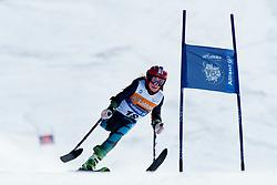 PUEYO MARIMON Ursula, ESP, Giant Slalom, 2013 IPC Alpine Skiing World Championships, La Molina, Spain