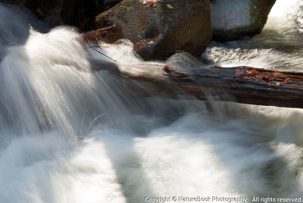 Water splashing over old wood in a Great Smoky Mountains stream looks refreshing.  Don't you want to jump in?