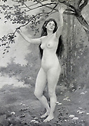 Eve by Ernest Renoux from Le Nu au Salon 1908 A collection of Nude photography published in Paris in 1908 by Société nationale des beaux-arts (France). et Société des artistes français. Catalogs of nudes exhibited at the official Paris Salons. Some years have two parts: The Salon held at the Champs Élysées sponsored by the Société des artistes français and the Salon held at the Champ de Mars sponsored by the Société nationale des beaux-arts