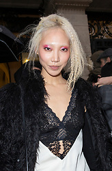 Soo Joo Park attends the Jean-Paul Gaultier Haute Couture Spring Summer 2019 show as part of Paris Fashion Week on January 23, 2019 in Paris, France.