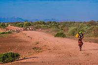 Dassanach tribe people walking to their village, Omo Valley, Ethiopia.