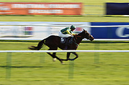 DECEMBER SECOND (5) ridden by Thomas Dowson and trained by Phllip Kirby winning The Procast Building Contractors Ltd Standard Open National Hunt Flat Race over 2m (£10,000)  during the Scottish Grand National race day at Ayr Racecourse, Ayr, Scotland on 13 April 2019.