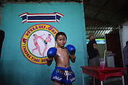 Jan 24, 2014 - Chiang Mai, Thailand - <br /> <br /> Nine Year Old Muay Thai Fighter<br /> <br /> Focus poses for a picture before his fight at the Thapae Muay Thai Stadium in Chiang Mai. PETCHFOGUS SITTHAHARNAEK, 9, aka Focus is the top fighter for his age and weight in Chiang Mai. He has begun fighting older, heavier opponents to continue to improve his skills. Fighters are typically paid 1000 baht (0) per fight. <br /> ©Exclusivepix